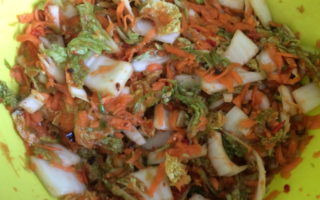Norfolk Kimchi Recipe – Fermented Food, Part 2